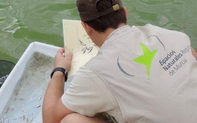 Publicado en EUROPARC el Seguimiento de las Salinas Litorales que desarrolla BIOCYMA para la OISMA